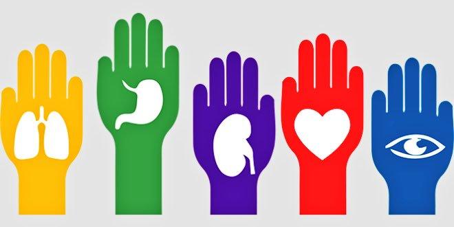 En México, 22 mil personas esperan la donación de algún órgano, ¡tú puedes donar vida!
